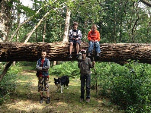 Even uitrusten tijdens de boswandeling bij Maudsplekje